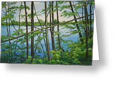 Fruit Ridge Ponds Greeting Card
