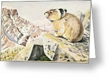 Fuertes, Louis Agassiz 1874-1927 - Burgess Animal Book For Children 1920 Pika Greeting Card