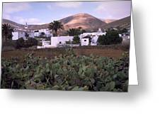 Fuerteventura Iv Greeting Card