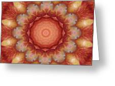 Fuji Apples Kaleidoscope Greeting Card