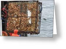 Full Crab Pot Greeting Card