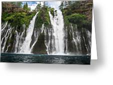 Full Frontal View Greeting Card