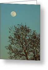 Full Moon At Sunset Greeting Card