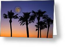 Full Moon Palm Tree Sunset Greeting Card
