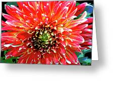 Full Of Fire II Greeting Card