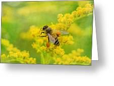 Fully Loaded Greeting Card