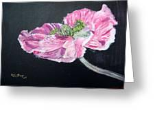 Fully Open Poppy Greeting Card