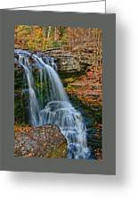 Fulmer Falls - Childs State Park Greeting Card