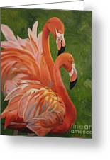 Fun Flamingos Greeting Card