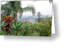 Funchal Maderia Greeting Card