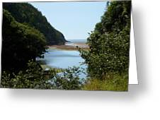 Fundy Beach Greeting Card