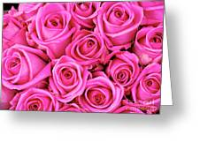 Fuschia Colored Roses Greeting Card