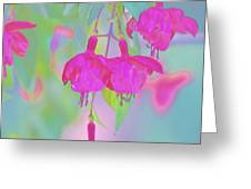 Fuchsia Flower Abstract Greeting Card