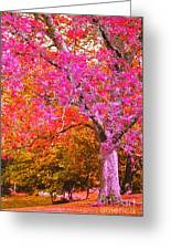 Fuschia Tree Greeting Card