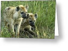 Fuzzy Baby Hyenas Greeting Card
