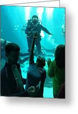 Ga Aquarium Scuba Greeting Card