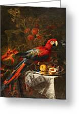 Gabriello Salci  Fruit Still Life With A Parrot Greeting Card