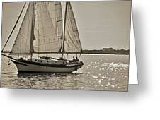 Gaff Rigged Ketch Cutter Sailing The Charleston Harbor Greeting Card
