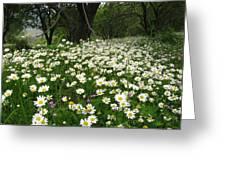 Gaia Blooming Greeting Card