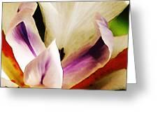 Gala Greeting Card