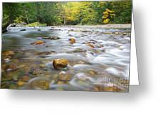 Gale River - Franconia New Hampshire  Greeting Card