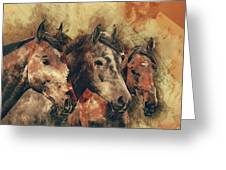 Galloping Wild Mustang Horses Greeting Card