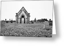 Galveston Old City Cemetery Greeting Card