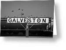 Galveston Train Yard Greeting Card