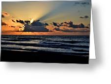 Galveston Tx 337 Greeting Card