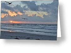 Galveston Tx 345 Greeting Card
