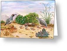 Gambel Quails Day In The Life Greeting Card