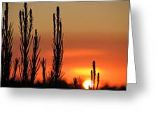 Gambier Sunset Greeting Card