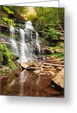 Ganoga Falls Ricketts Glen Greeting Card