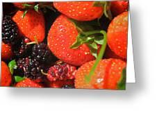Garden Berries Greeting Card
