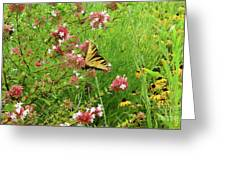 Garden Butterfly Greeting Card