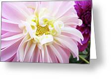 Garden Floral Art Pink Dahlia Flower Baslee Troutman Greeting Card