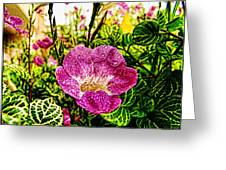 Garden Flower Greeting Card