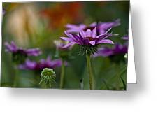 Garden Flowers 2 Greeting Card