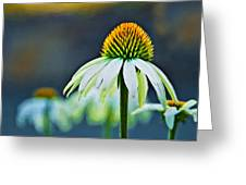 Bristle Flower Greeting Card