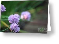 Garden Fresh Chives Greeting Card