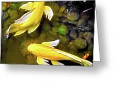 Garden Goldenfish Greeting Card