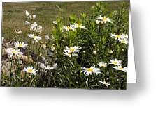 Garden Happiness Greeting Card