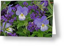 Garden Harmony 2 Greeting Card