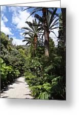 Garden In Menton Greeting Card