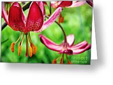 Garden Jewels 1 Greeting Card