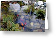Garden Koi Pond Greeting Card