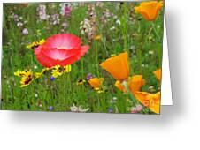 Garden Of Delight Greeting Card