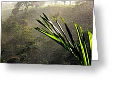 Garden Of Eden Rain Greeting Card
