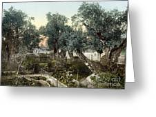 Garden Of Gethsemane Greeting Card