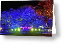 Garden Of Light By Kaye Menner Greeting Card